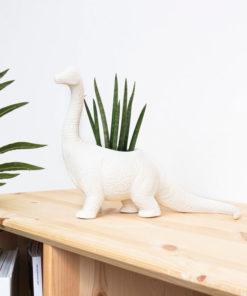 Dinosaur Planters Prehistoric Plant Pots