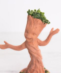 I am Groot. This Cute Dancing Groot Chia Pet Comes with everything you need to extrude leafy greens out of Groot's head.