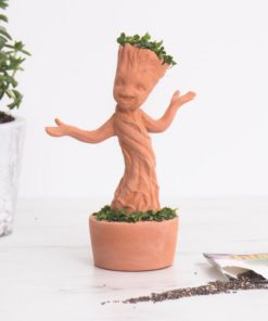 Dancing Groot Chia Pet from Guardians of the Galaxy Vol. 2. Each kit comes with a custom moulded Baby Groot pottery planter, convenient plastic drip tray, and enough chia seed packets for 3 plantings.